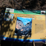 Mange løyper i fjella  i Zaros